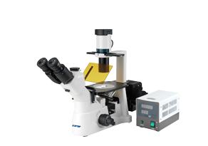 XD活细胞观察荧光显微镜