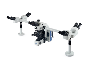 RX50DO3/RX50DO5多人共览生物显微镜